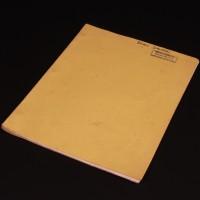 Brian Johnson personal second draft script