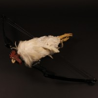 Topper Harley (Charlie Sheen) bow and chicken arrow