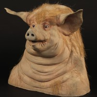 Pig reference head
