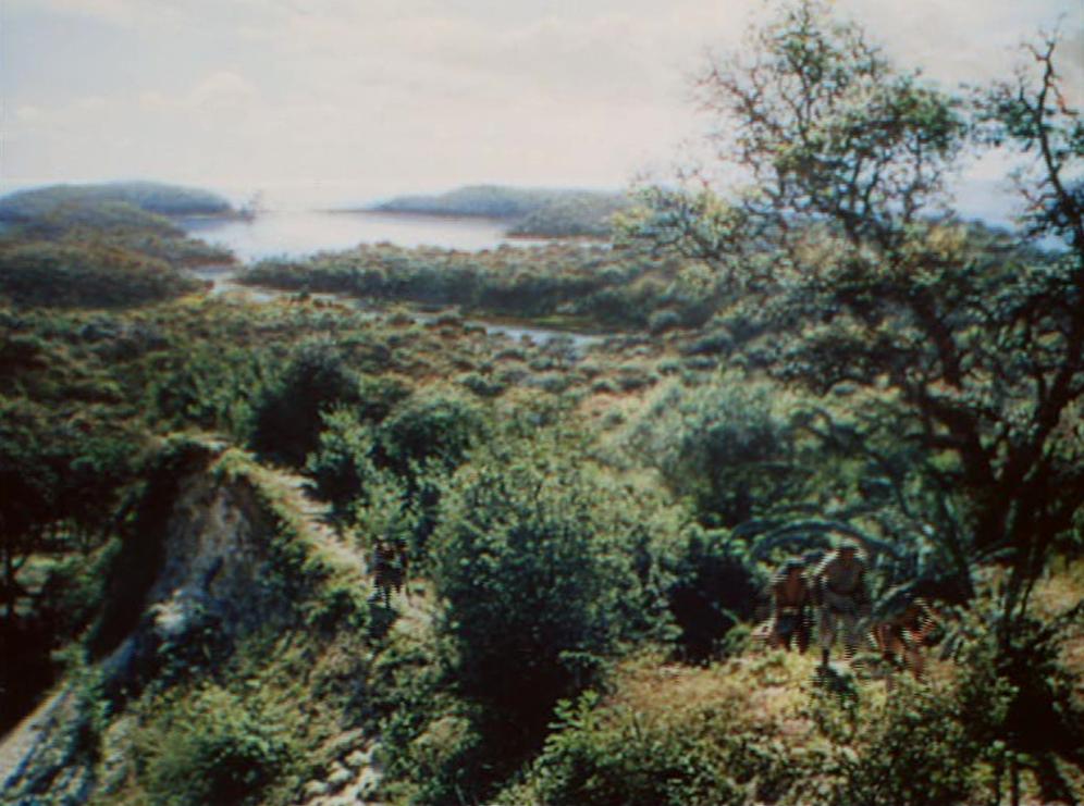 Peter Ellenshaw mate painting for Treasure Island (1950)