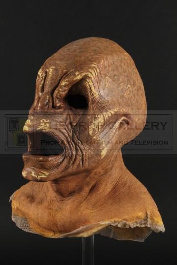 Weevil mask