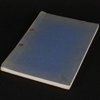 Annotated German dubbing script