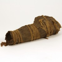 Mummy leg