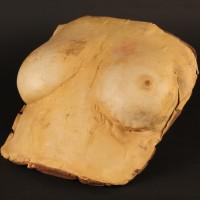 Megan Halsey (Barbara Crampton) insert chest